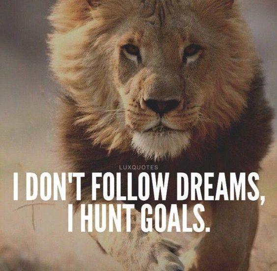 Dream Attitude