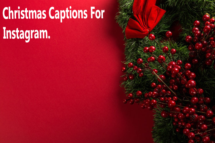 Christmas Captions.350 Best Instagram Captions 2019 For Your Photo Qoutes For