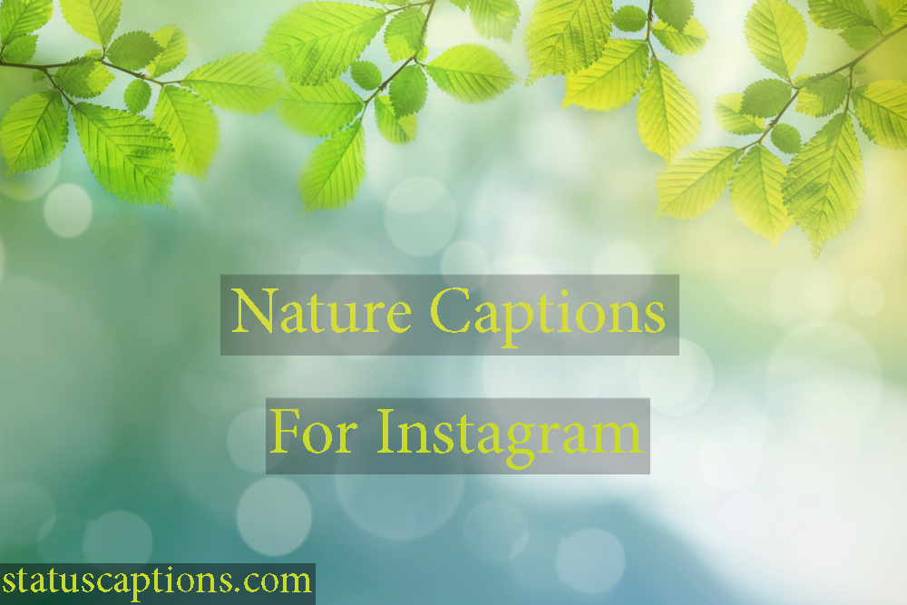 75 Nature Captions For Instagram Traveler Nature Lovers Photos