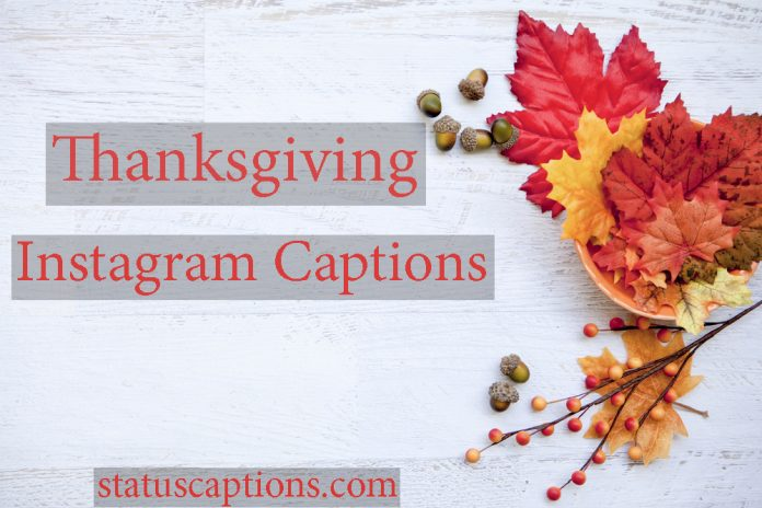 thanksgiving captions